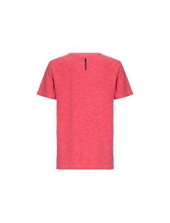 Camiseta-CKJ-MC-Est-Traditional---2
